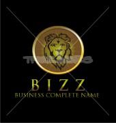 Lion Company Creative Logo Template