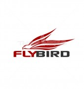 Eagle Flying Creative Logo Template