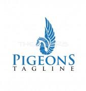Pigeon Network Logo Design
