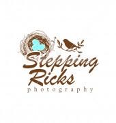 Bird Nest Abstract Animal Logo Template