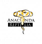 Anaconda Reptilia Logo Design