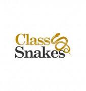 Class Snakes Logo Template