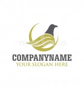 Creative Pigeon Logo Template for Category of Finance