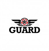 Star Guard Wing Creative Product Logo Template
